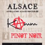 https://www.vins-kamm.fr/vin-alsace/pinot-noir-vieilli-en-fut-de-chene-vin-nature/