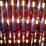 https://www.vins-kamm.fr/photos-vins-kamm-alsace/mise-en-bouteille-du-rose-kammeleon/
