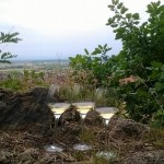 https://www.vins-kamm.fr/photos-vins-kamm-alsace/riesling-grand-cru-frankstein-mineralite-made-in-granite/