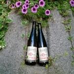 https://www.vins-kamm.fr/photos-vins-kamm-alsace/mise-en-bouteille-vins-nature/