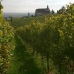 https://www.vins-kamm.fr/photos-vins-kamm-alsace/chapelle-saint-sebastien/